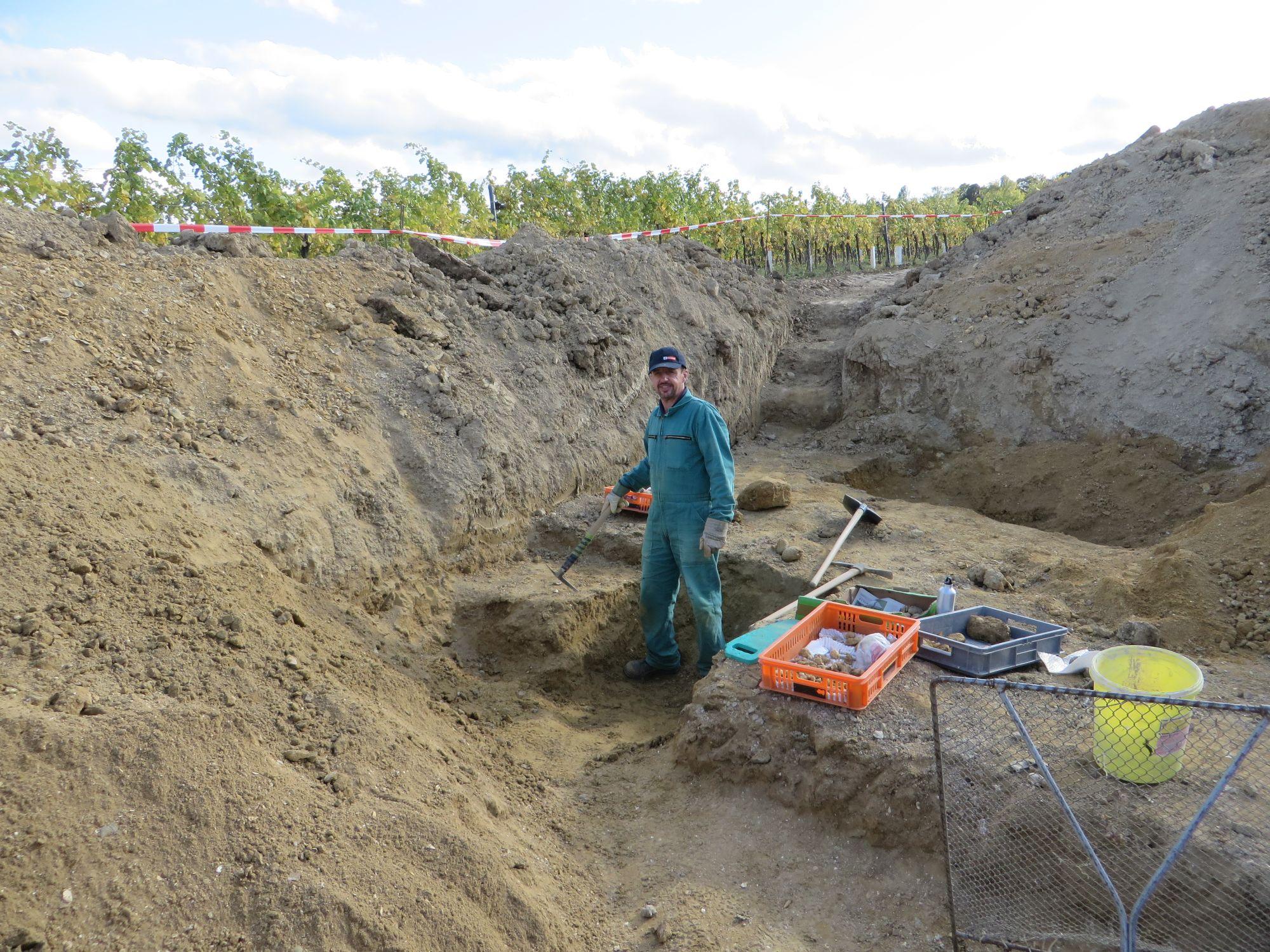 Grabung Gainfarn 2019  (c) Gerhard Wanzenböck